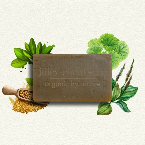 Soin Capillaire - Shampooing Solide Fenugrec, Brahmi & Plantain
